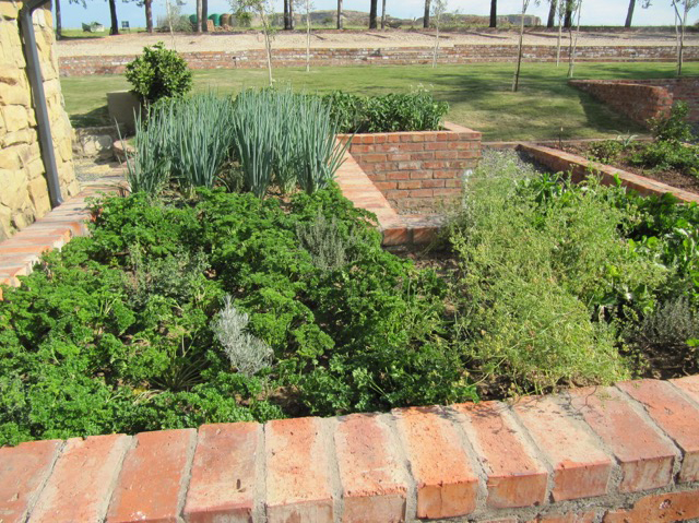 A herb & vegetable garden, planted and maintained by residents of Naledi Village, keeps Earthrise Mountain Lodge's kitchen stocked up. Photo courtesy Lucie Pagé
